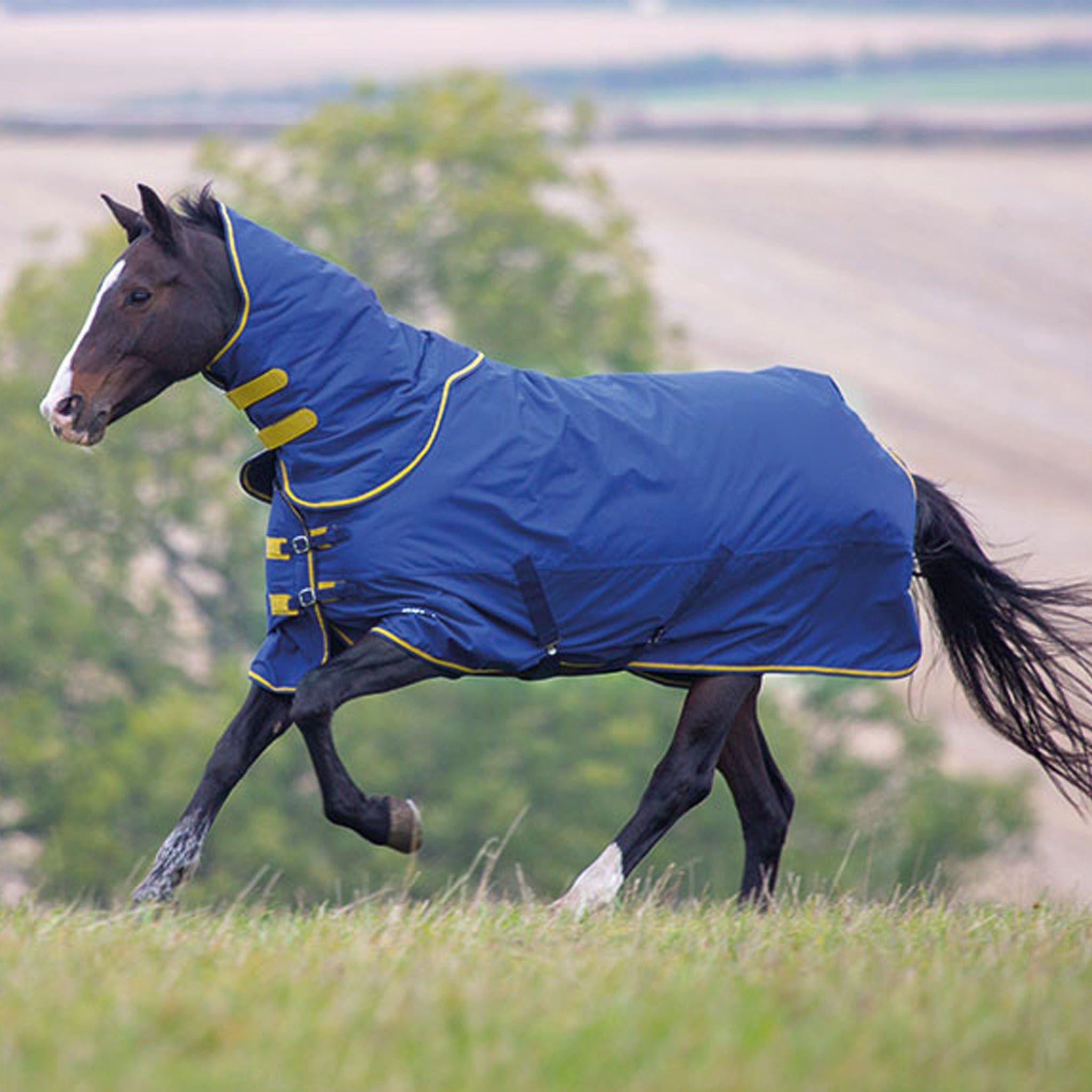 Shires Tempest Original 300 Heavyweight Turnout Rug And Neck Set Navy 9376.