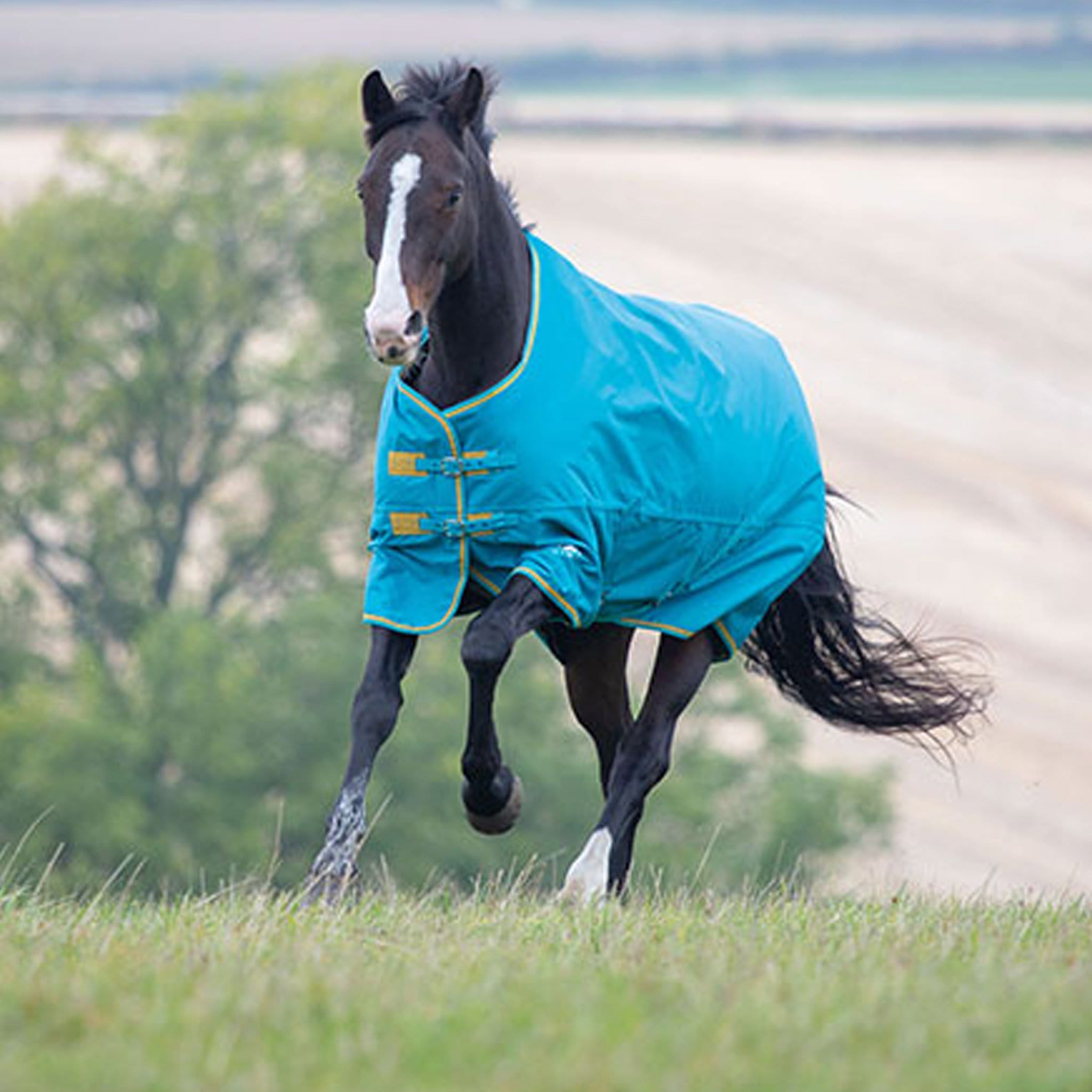 Shires Tempest Original 300 Heavyweight Turnout Rug Teal 9337.