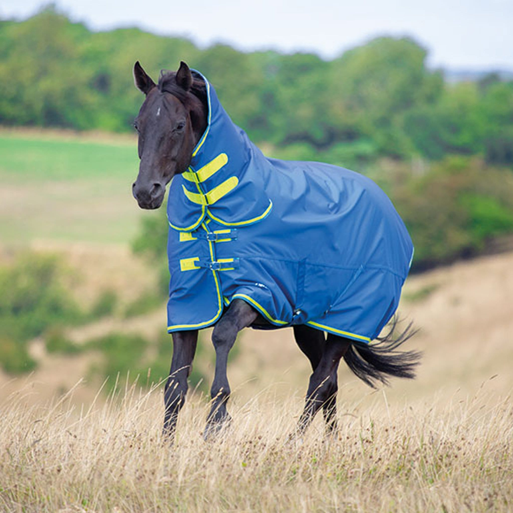 Shires Tempest Original 50 Combo Lightweight Turnout Rug 9373 Blue and Lime