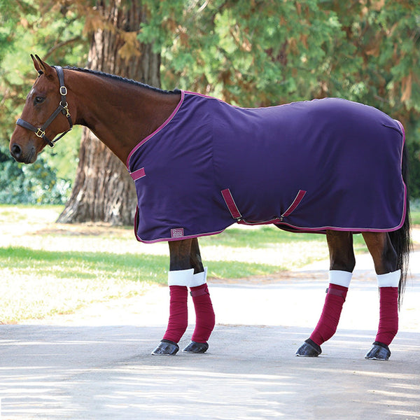 Shires Tempest Original Jersey Cooler Purple and Plum 94