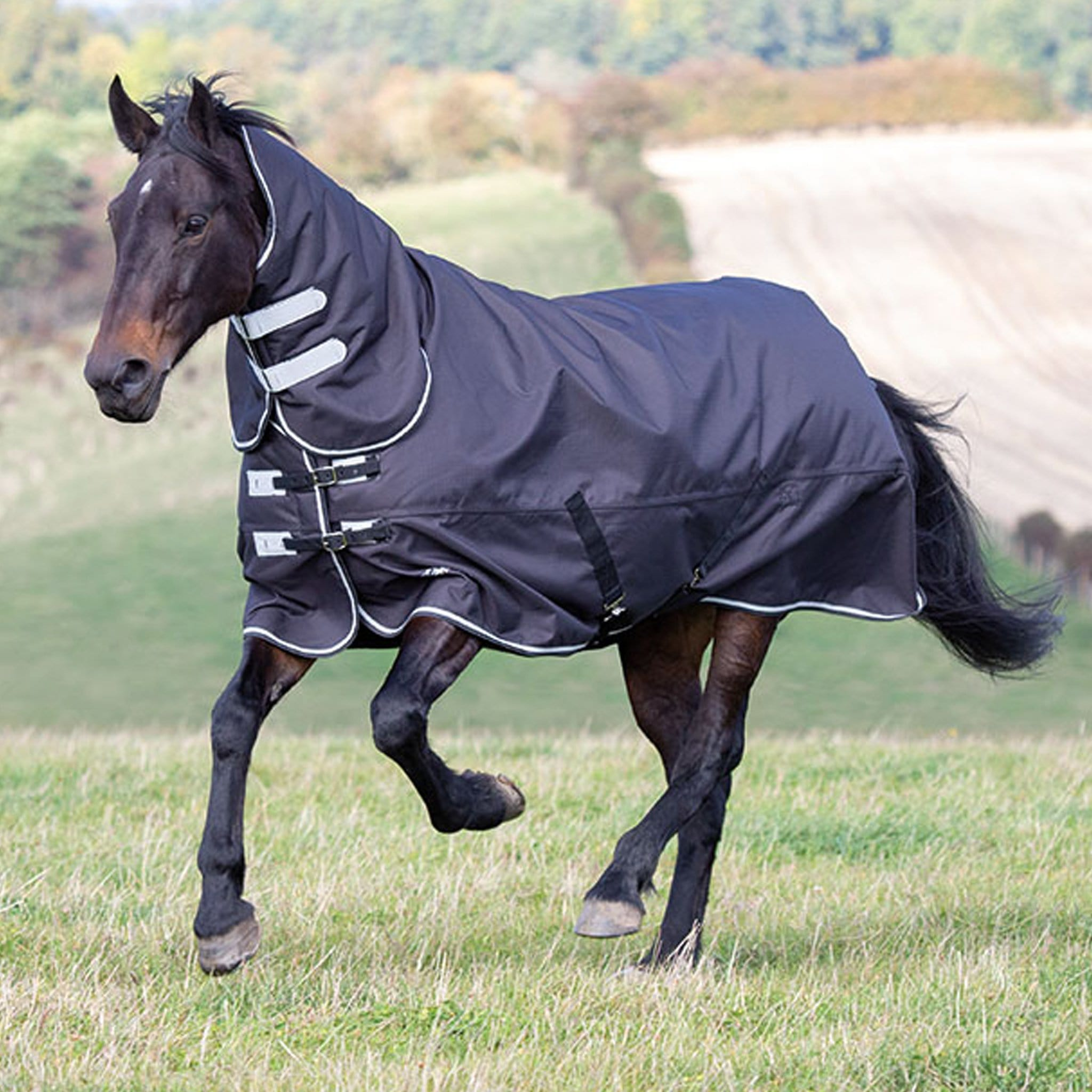 Shires Tempest Plus 300 Heavyweight Combo Turnout Rug Black 9683.