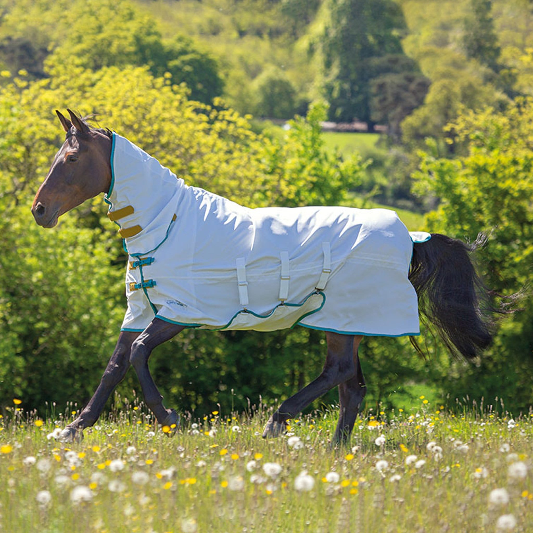 Shires Tempest Plus Sweet-Itch Combo Fly Rug 9325 White With Green And Yellow Trim on horse cantering