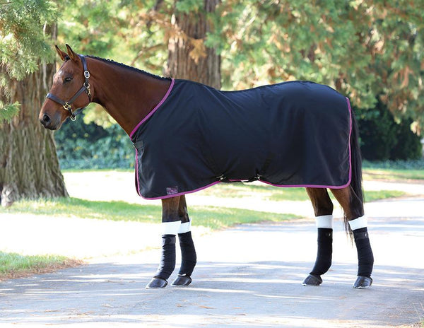 Shires Tempest Premium Stable Sheet Black and Fuchsia 98