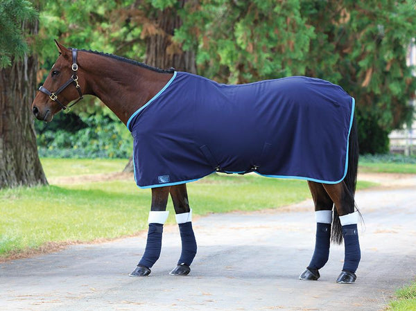 Shires Tempest Premium Stable Sheet Navy and Blue 98