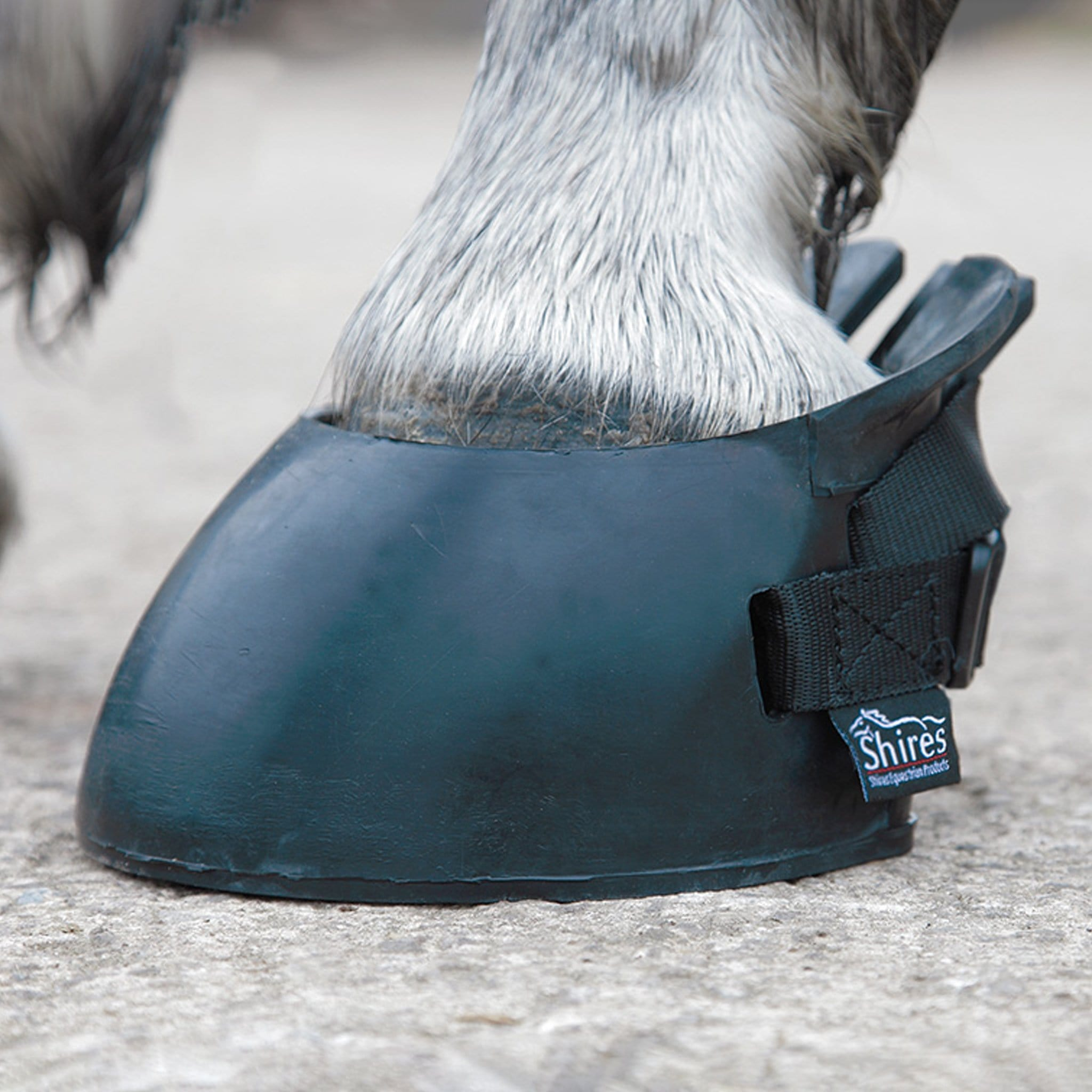 Shires Temporary Shoe Boot 1847 Black