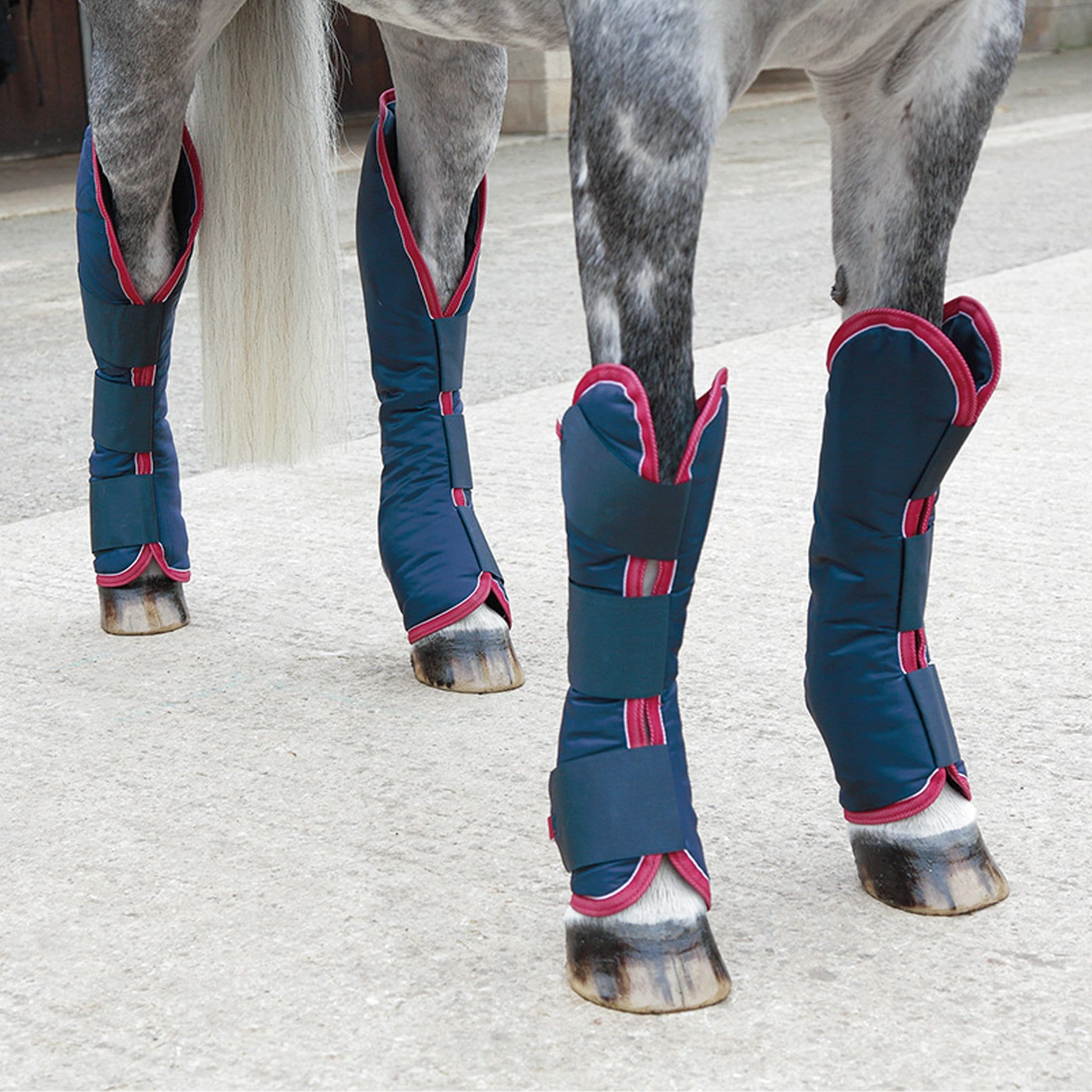 Shires Travel Boots 179