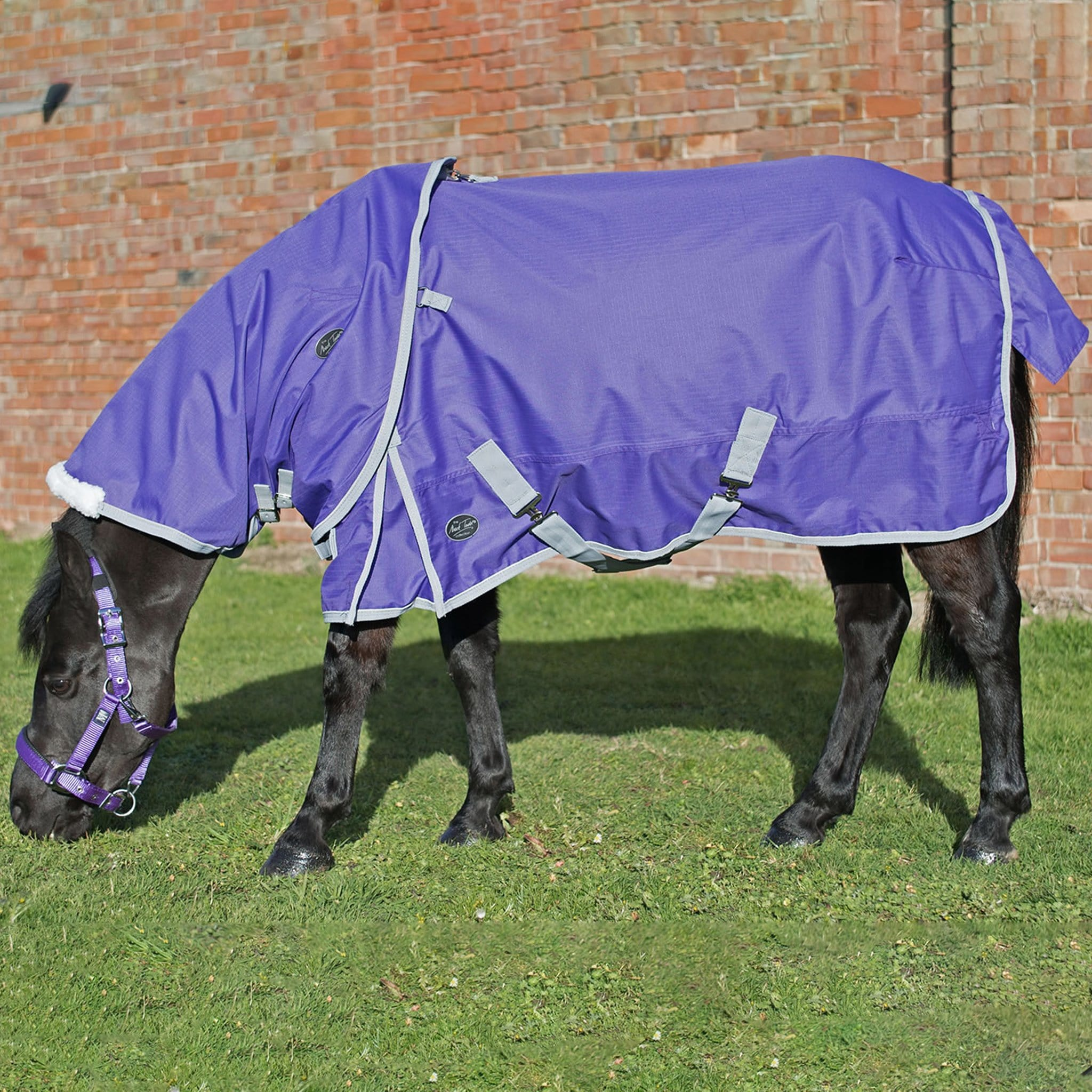 Mark Todd Lightweight 0g Standard Pony Turnout Rug TOD893451.