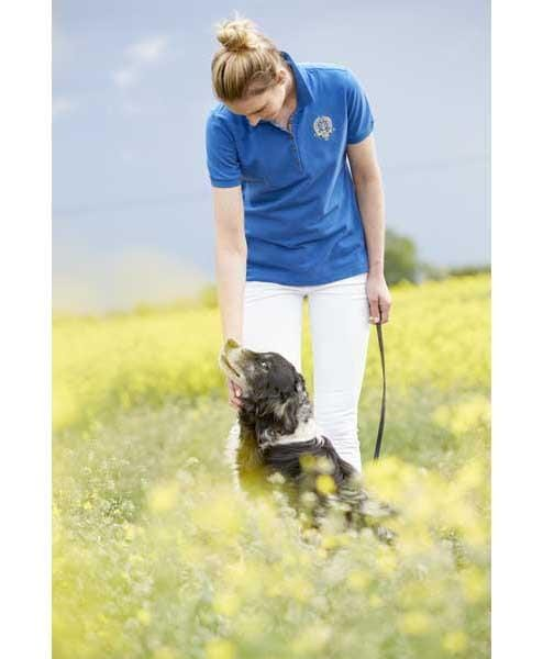 Toggi Groveland Polo Shirt in Royal Blue Rider