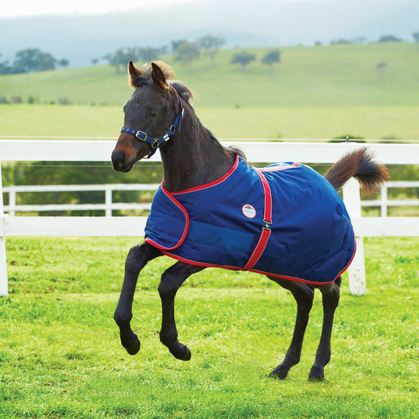 Weatherbeeta 1200D Adjustable Foal Mediumweight Turnout Rug 654184