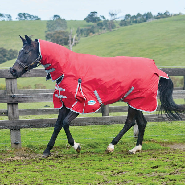 Weatherbeeta ComFiTec Classic Mediumweight Combo Turnout Rug Red on the Grass 801498