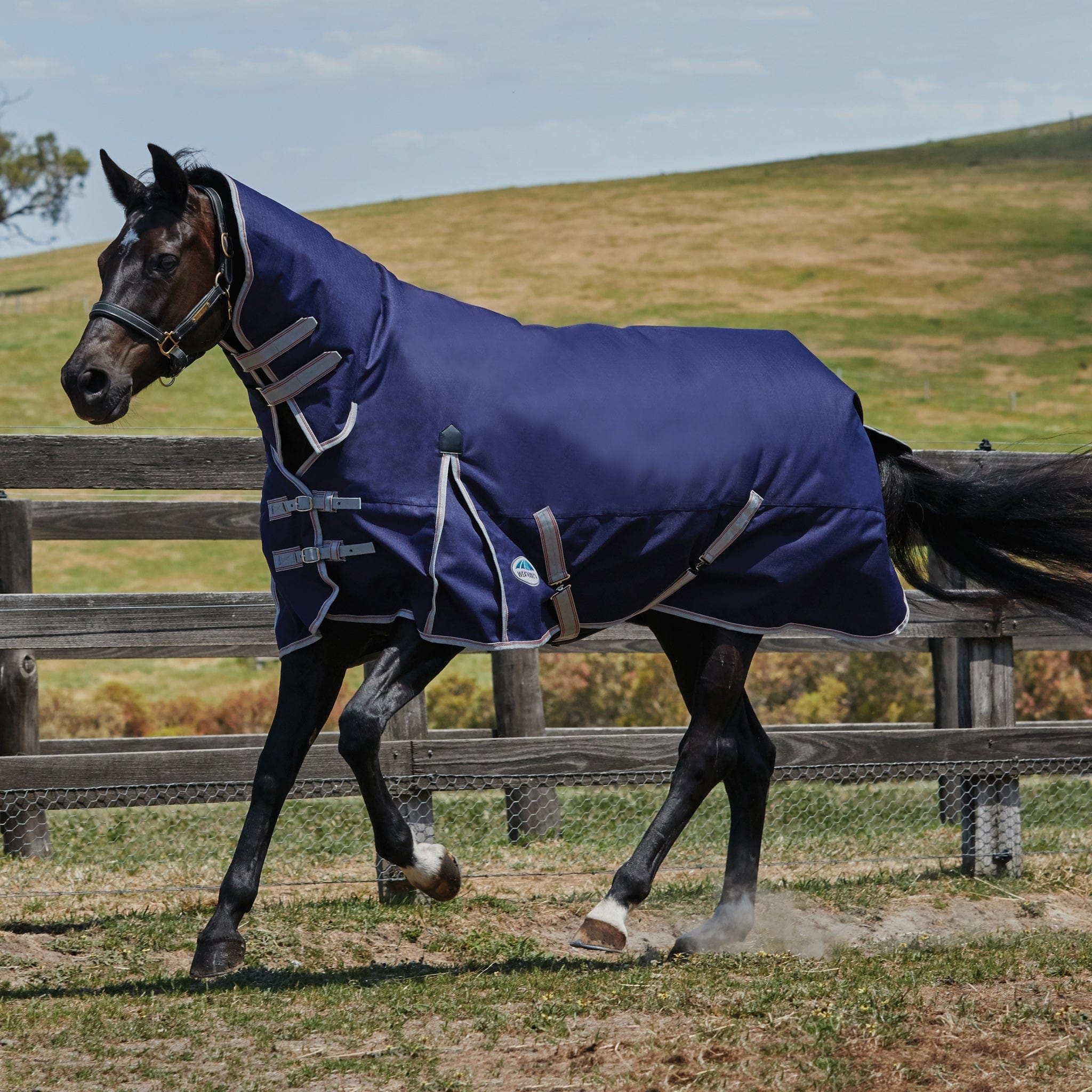 Weatherbeeta ComFiTec Essential Heavyweight Combo Neck Turnout Rug Navy 801364