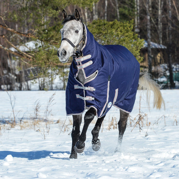 Weatherbeeta ComFiTec Essential Heavyweight Combo Turnout Rug Navy Front View in the Snow 801364