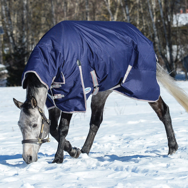 Weatherbeeta ComFiTec Essential Mediumweight Combo Turnout Rug Navy Snow Playing 801378