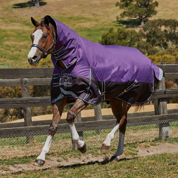 Weatherbeeta ComFiTec Plus Dynamic Heavyweight Combo Turnout Rug Purple Galloping Horse 801164