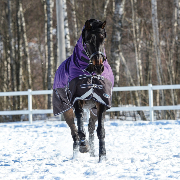 Weatherbeeta ComFiTec Plus Dynamic Heavyweight Combo Turnout Rug Purple Front View Snow 801164