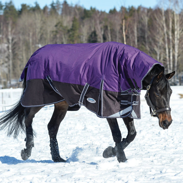 Weatherbeeta ComFiTec Plus Dynamic Heavyweight Combo Turnout Rug Purple Playing in the Snow 801164