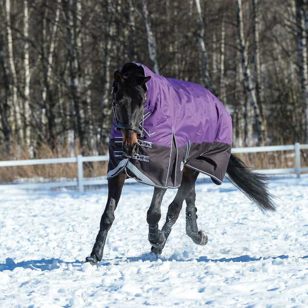 Weatherbeeta ComFiTec Plus Dynamic Heavyweight Combo Turnout Rug Purple Left Bend Trot in the Snow 801164