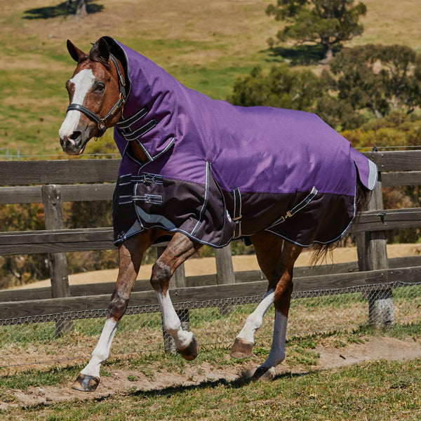 Weatherbeeta ComFiTec Plus Dynamic Mediumweight Combo Turnout Rug Purple & Black 801193