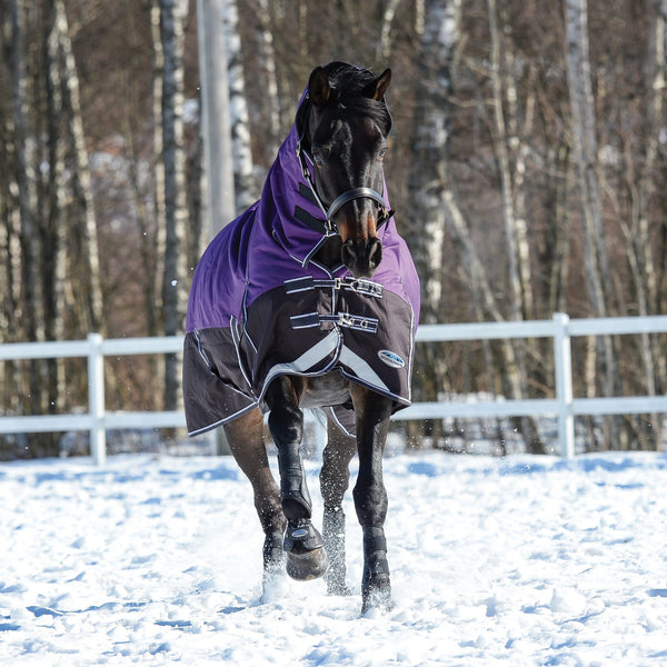 Weatherbeeta ComFiTec Plus Dynamic Mediumweight Combo Turnout Rug Purple & Black Snow Front View 801193