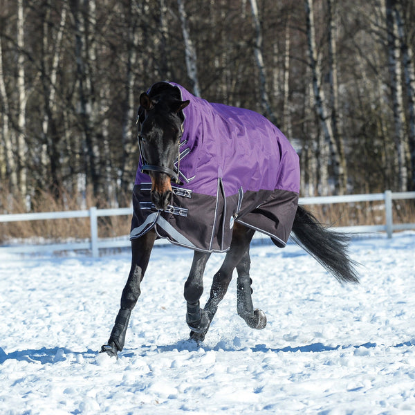 Weatherbeeta ComFiTec Plus Dynamic Mediumweight Combo Turnout Rug Purple & Black Snow LHS Bend 801193