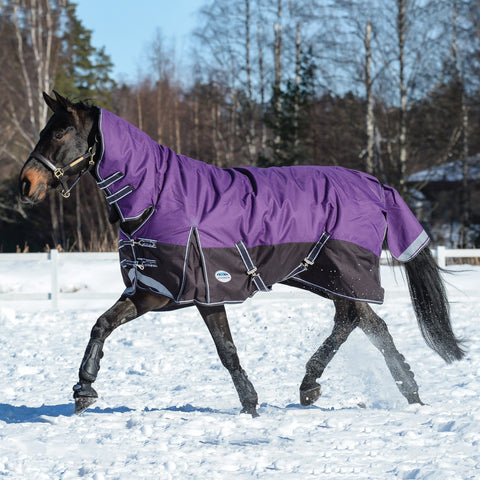 Weatherbeeta ComFiTec Plus Dynamic Mediumweight Combo Turnout Rug Purple & Black Trotting in the Snow 801193