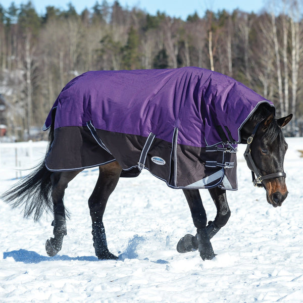 Weatherbeeta ComFiTec Plus Dynamic Mediumweight Combo Turnout Rug Purple & Black Snow 801193