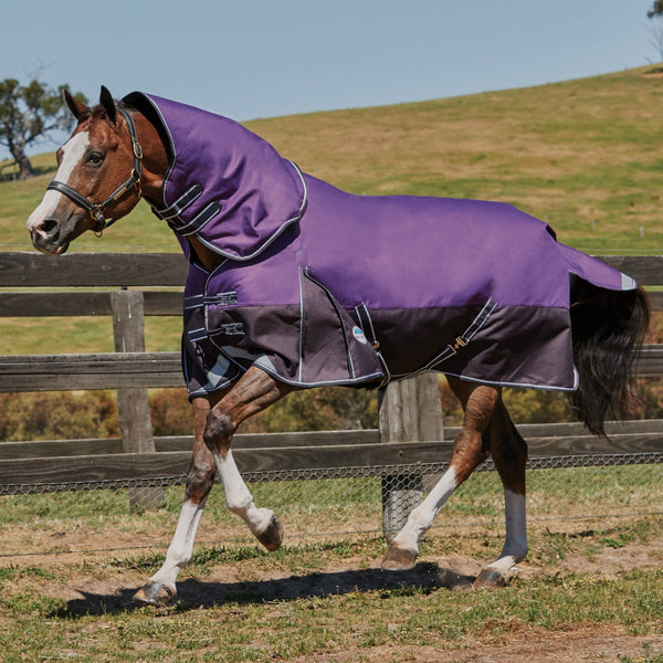 Weatherbeeta ComFiTec Plus Dynamic Mediumweight Detach-A-Neck Turnout Rug Purple 803380