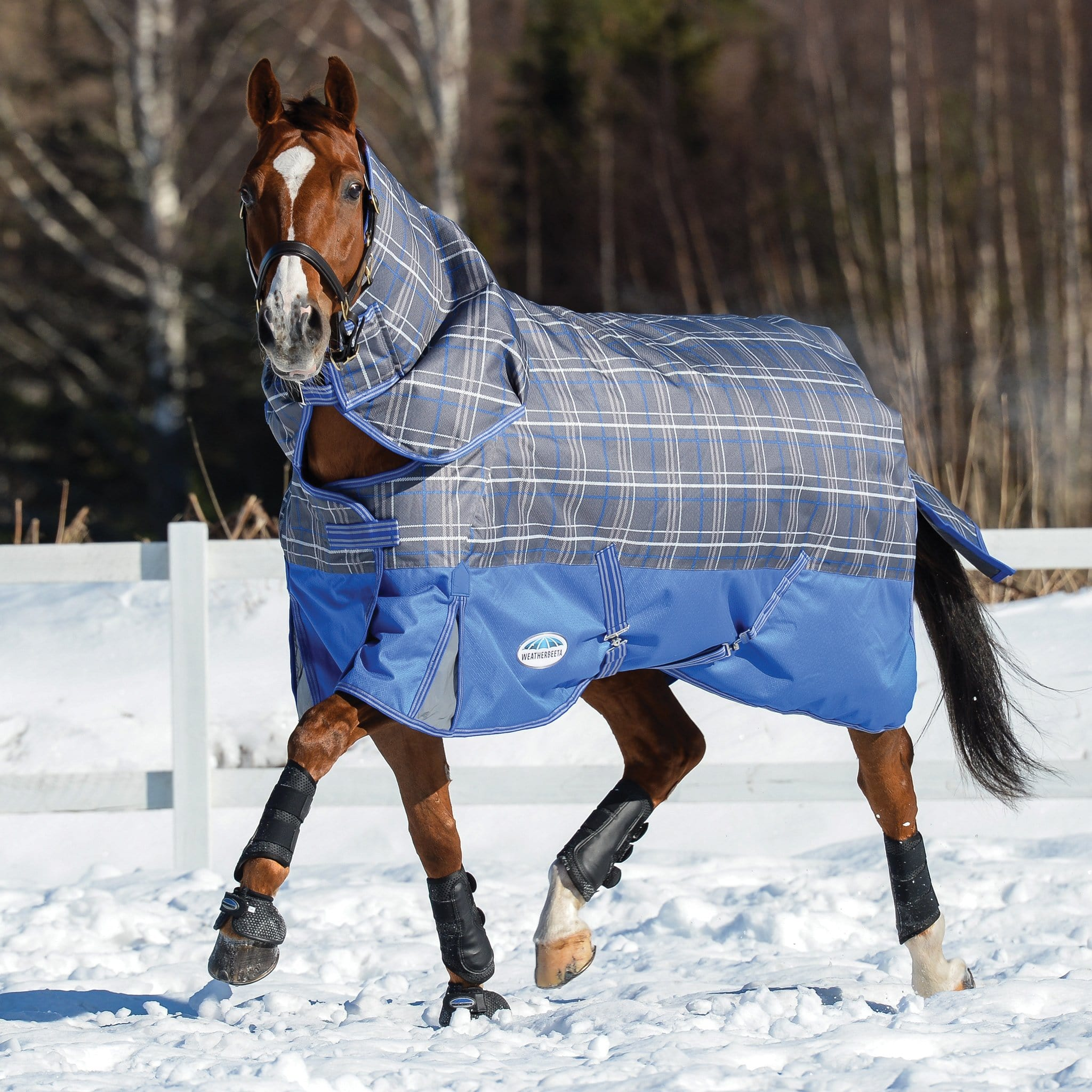 Weatherbeeta ComFiTec Premier Free Mediumweight 220g Detachable Neck Turnout Rug Grey Plaid Trotting in the Snow 801045