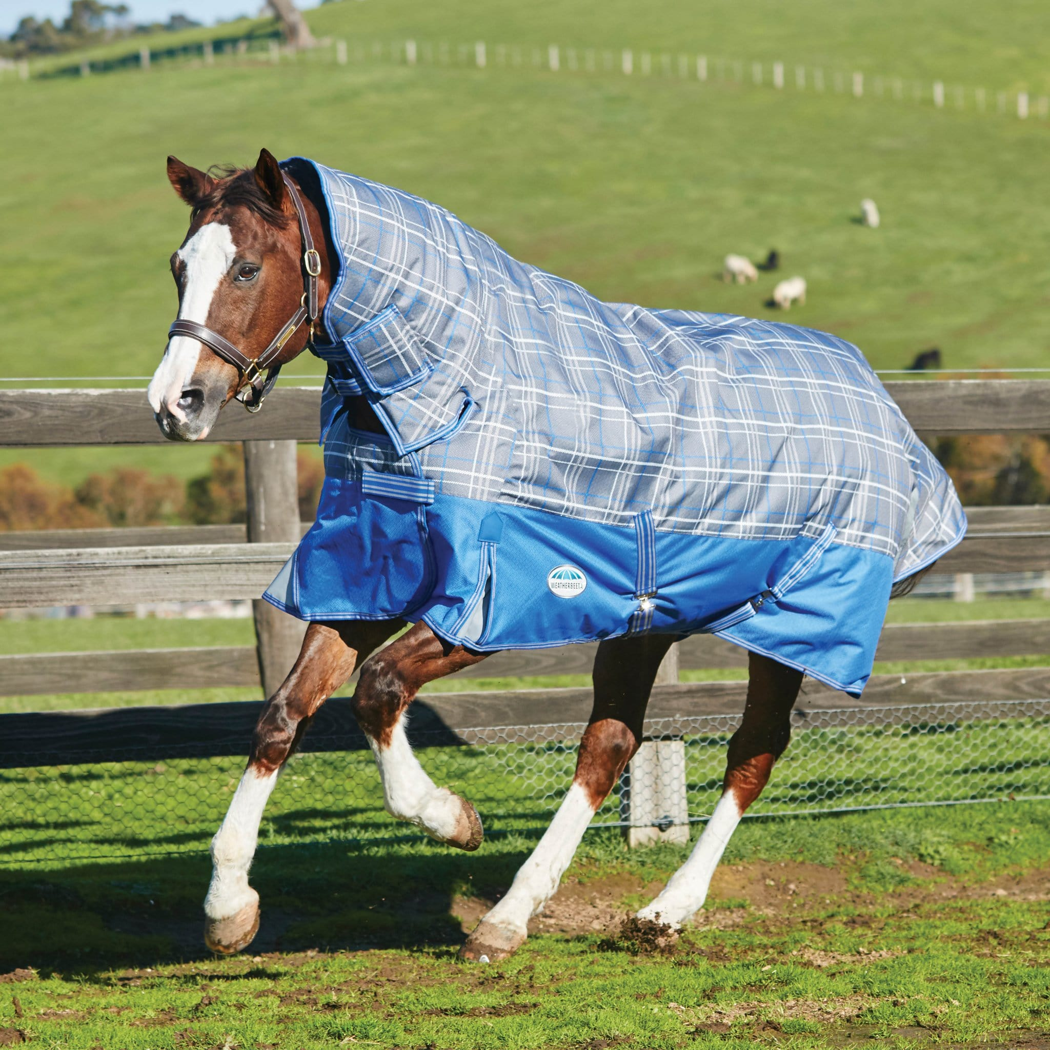 Weatherbeeta ComFiTec Premier Free Heavyweight Combo Turnout Rug Grey Plaid 801061