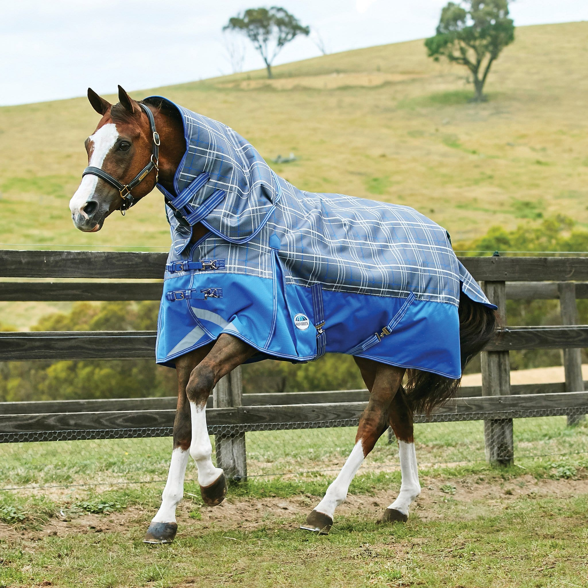 Weatherbeeta ComFiTec Premier Trio Lightweight 100g Detachable Neck Turnout Rug 801116