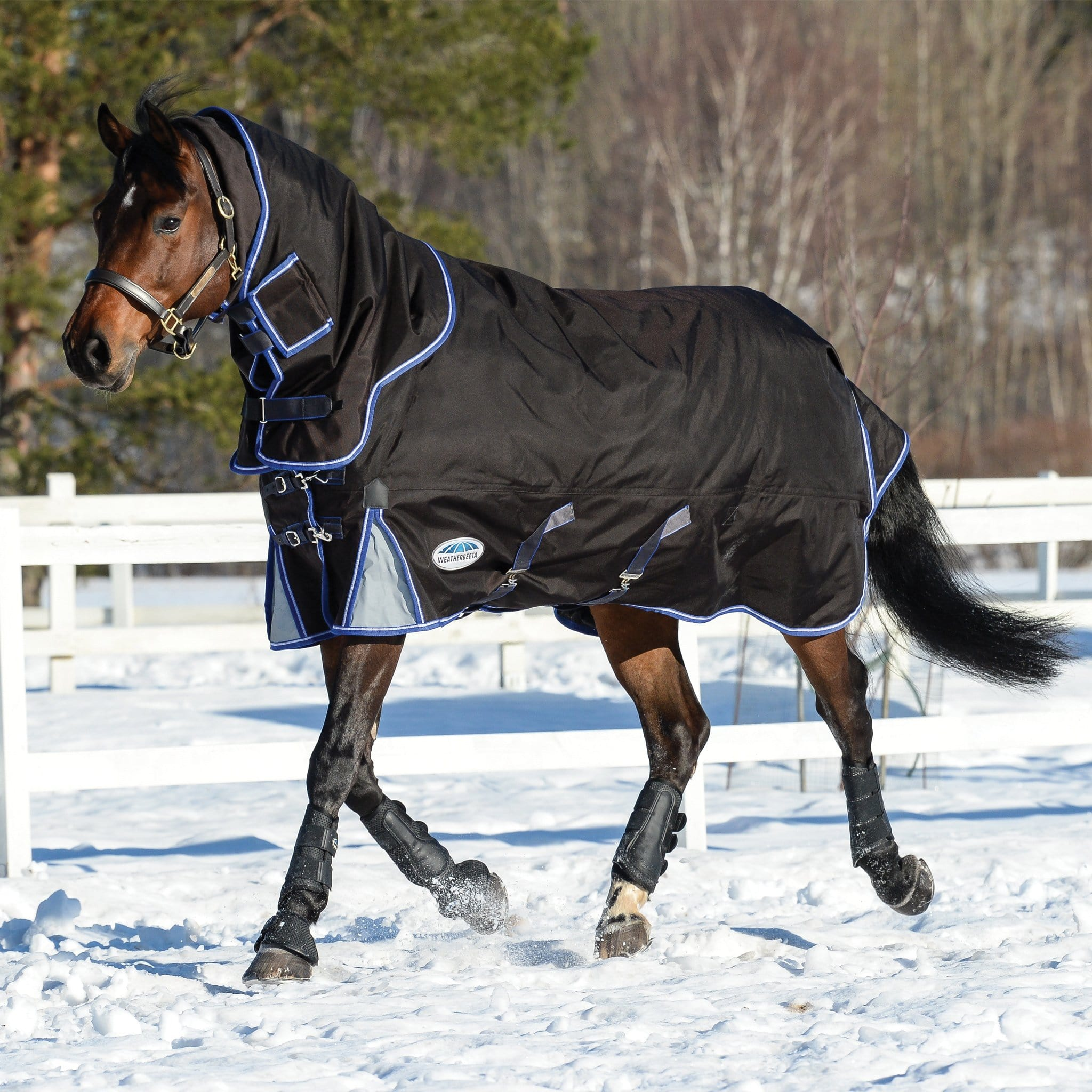 Weatherbeeta ComFiTec Ultra Cozi Heavyweight 360g Detachable Neck Turnout Rug Trotting in the Snow 800986