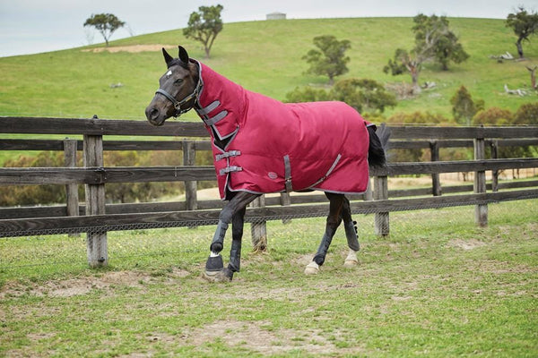 Weatherbeeta Genero 1200D Combo Heavy Turnout Rug - 5'6 / Berry and Grey | EQUUS