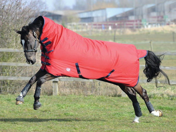 Weatherbeeta Genero 1200D Combo Lite Turnout Rug in Red and Navy 654197