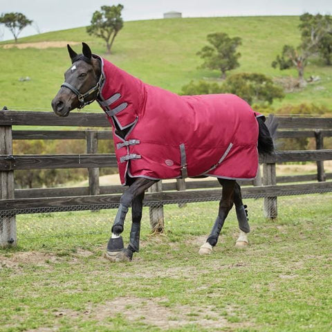 Weatherbeeta Genero 1200D Combo Medium Turnout Rug - 5'6 / Berry and Grey | EQUUS
