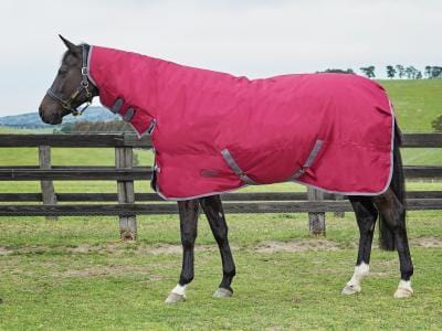 Weatherbeeta Genero 1200D Combo Medium Turnout Rug - EQUUS