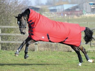 Weatherbeeta Genero 1200D Combo Medium Turnout Rug - 5'6 / Red and Navy | EQUUS