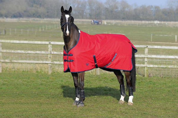 Weatherbeeta Genero 1200D Standard Neck Lite Turnout Rug worn by Horse in Field  654239
