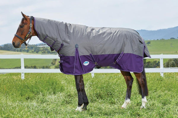 Weatherbeeta Original 1200D Combo Heavy Turnout Rug - 5'6 / Slate and Violet | EQUUS