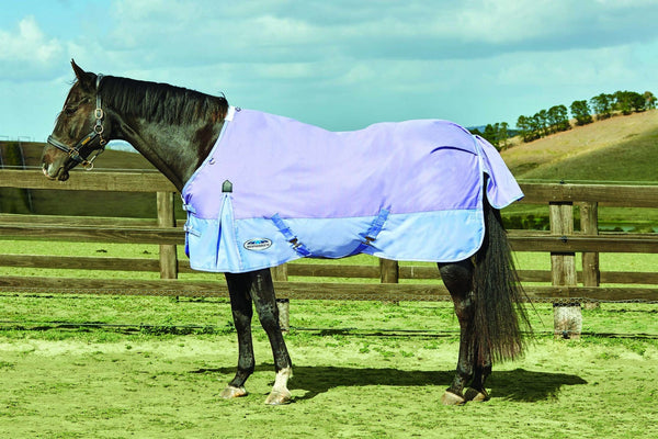 Weatherbeeta Original 1200D Standard Neck Lite Turnout Rug in Purple and Violet 591965