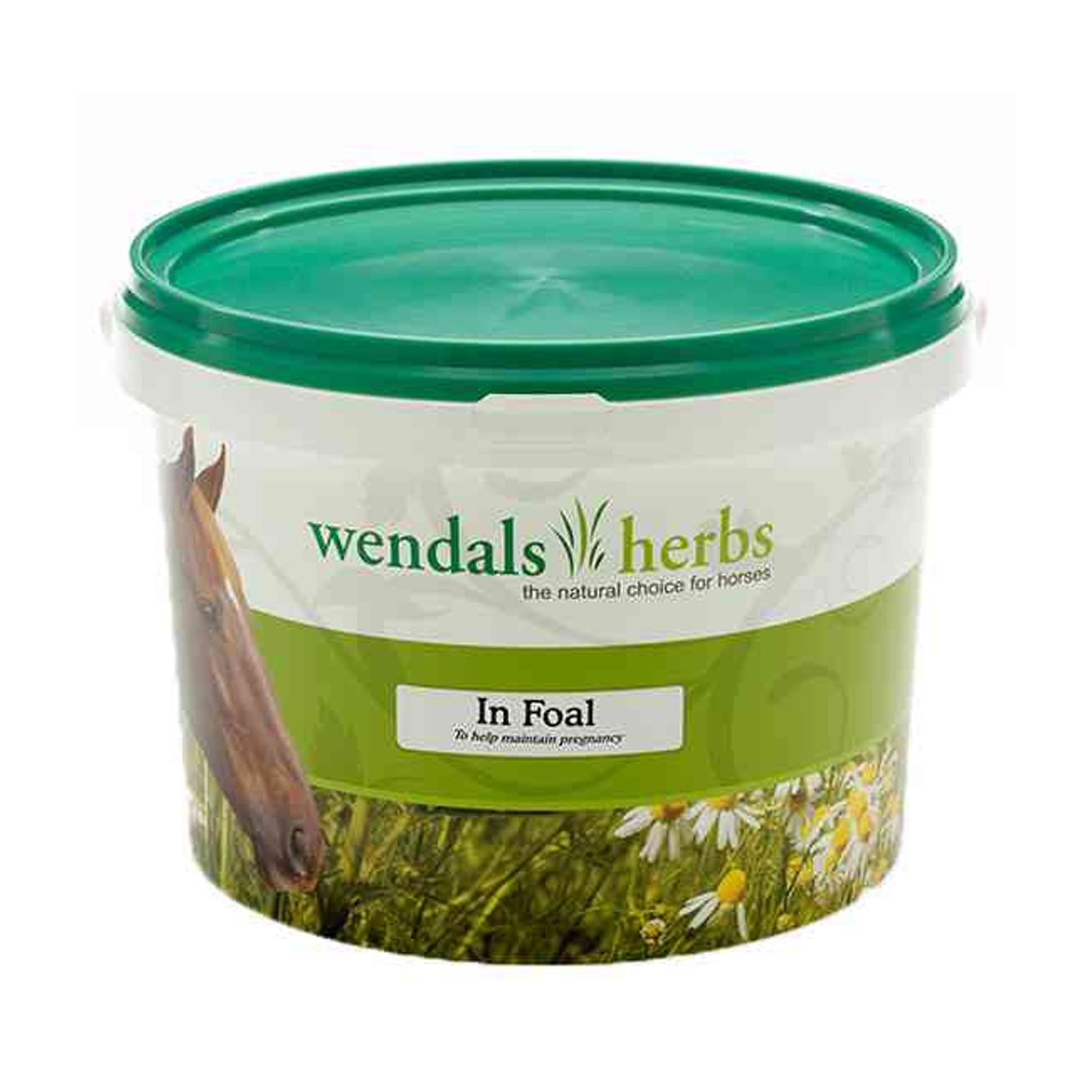 Wendals Herbs In Foal Supplement 1KG 8112