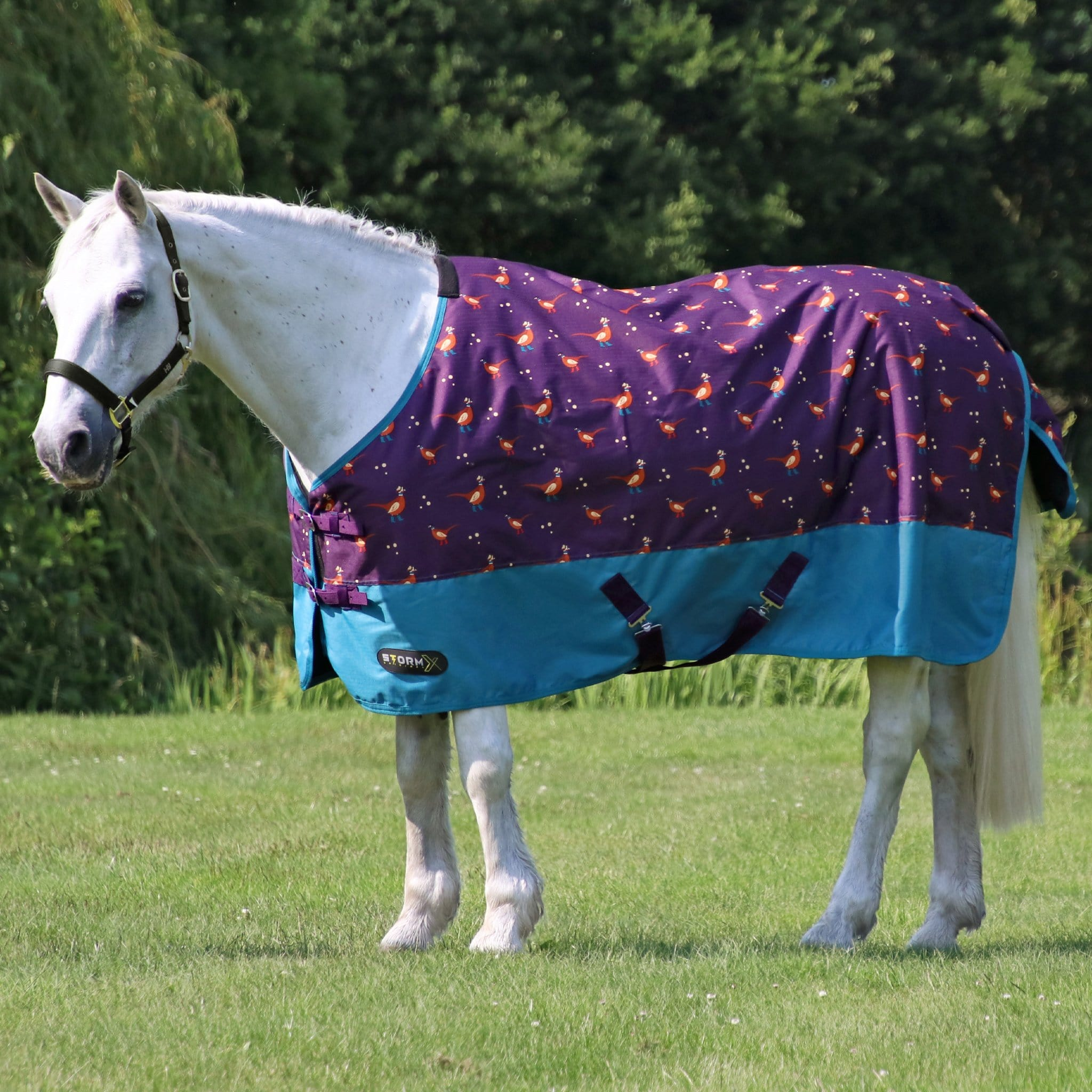 Hy StormX Original Patrick the Pheasant Lightweight 100g Standard Turnout Rug 28390