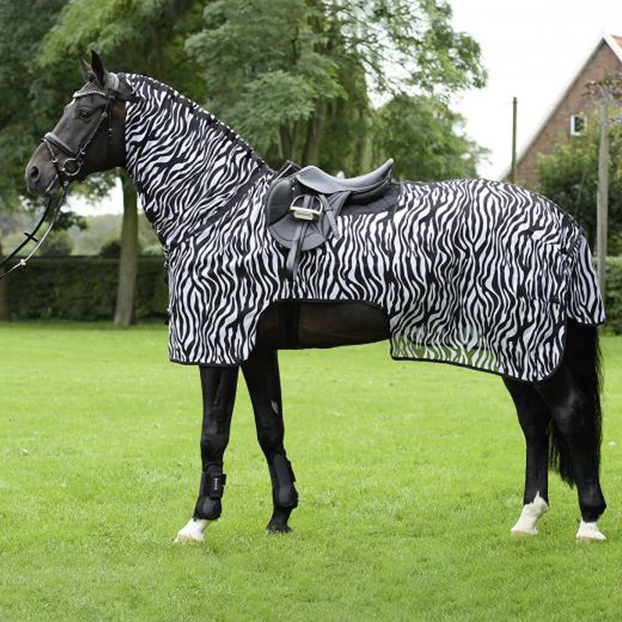 Busse Moskito II Zebra Print Exercise Fly Sheet 603169 Full Shot On Horse