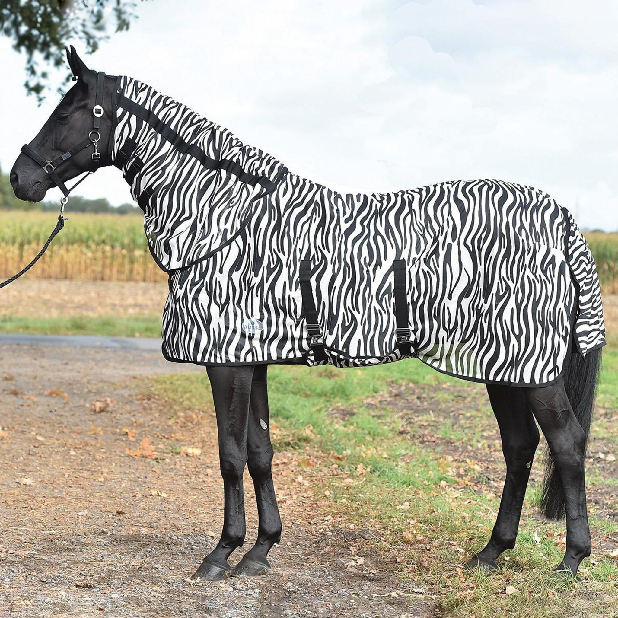 Busse Paddock Comfort Zebra Fly Sheet With Detachable Neck Cover 603601 With Neck Cover