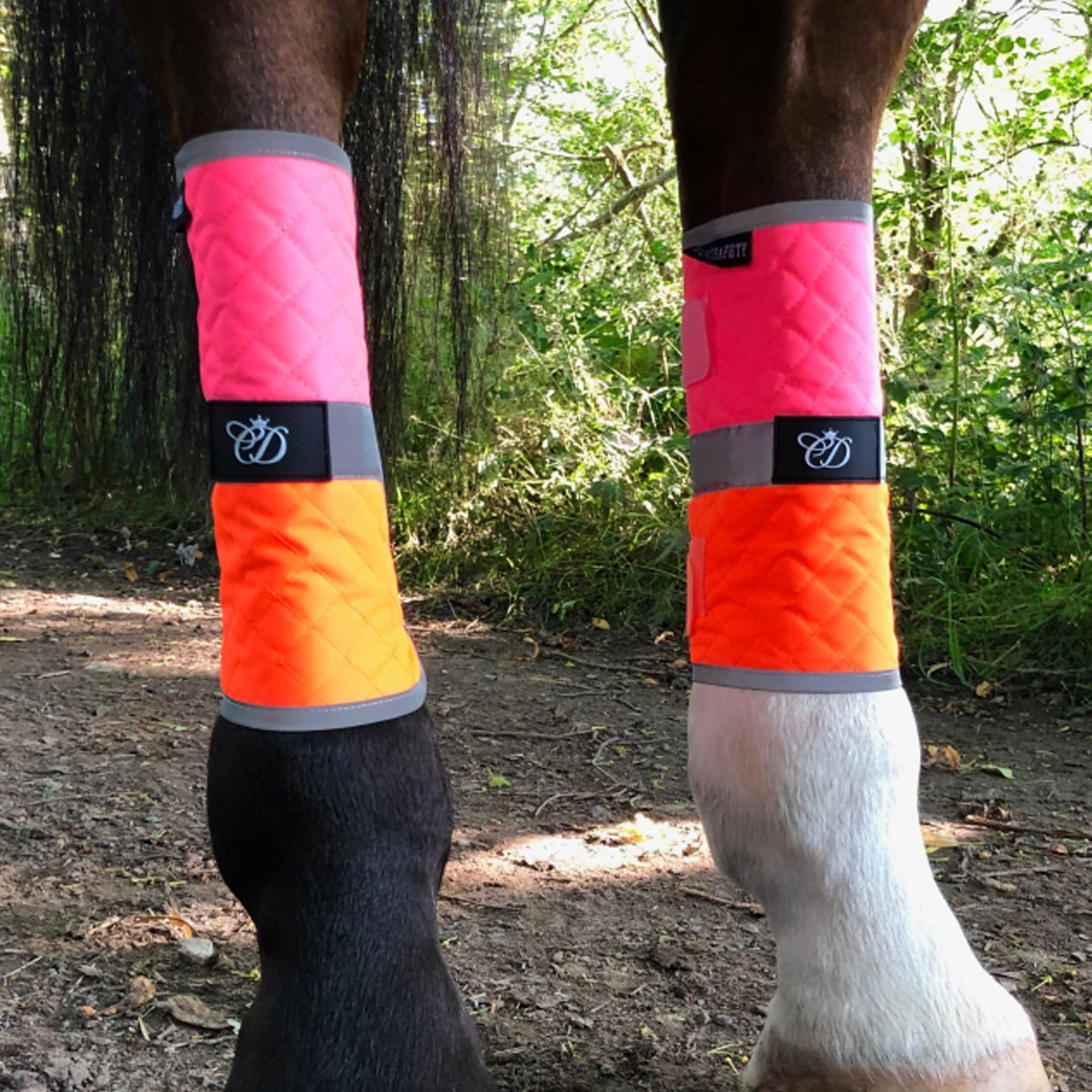 Equisafety Charlotte Dujardin Multi-Coloured Leg Boots CDMLPOP Pink and Orange Pair On Horse