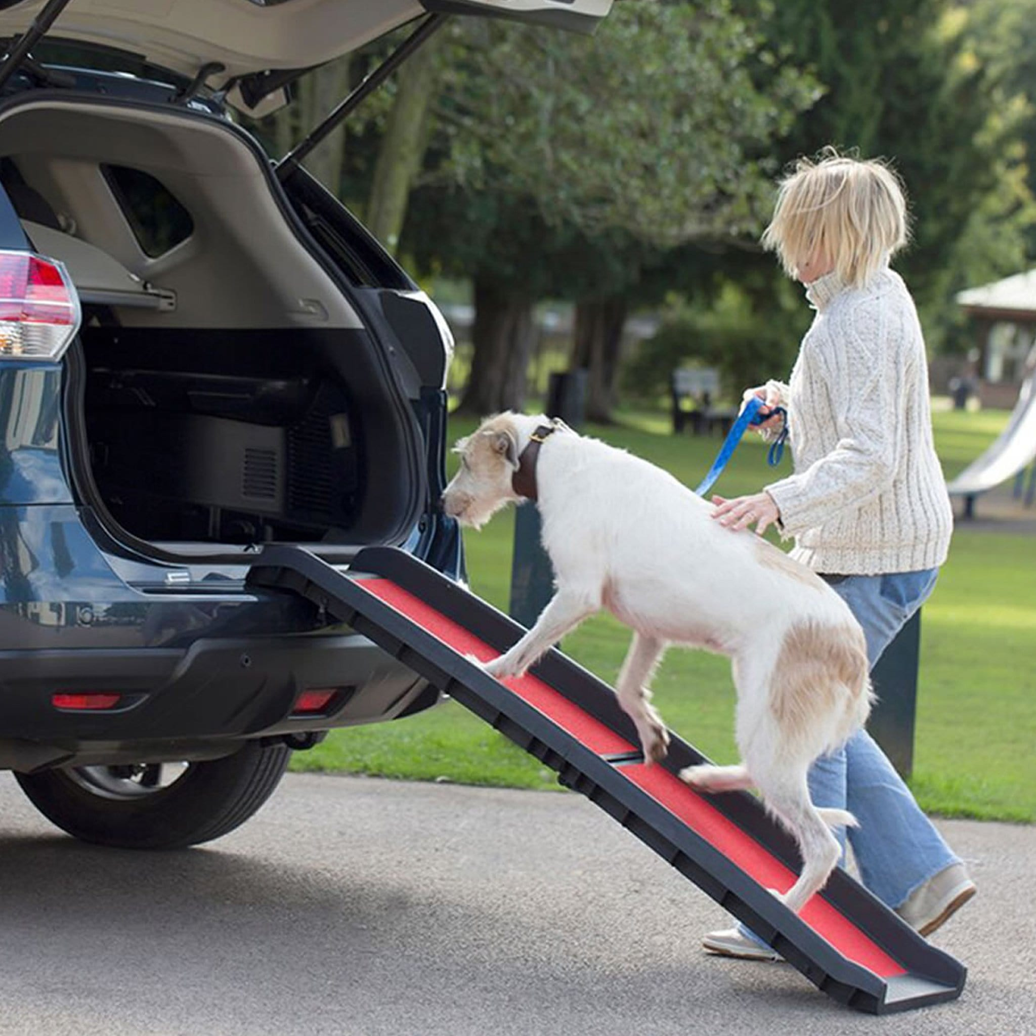 Henry Wag Lightweight Folding Dog Ramp HWG0035