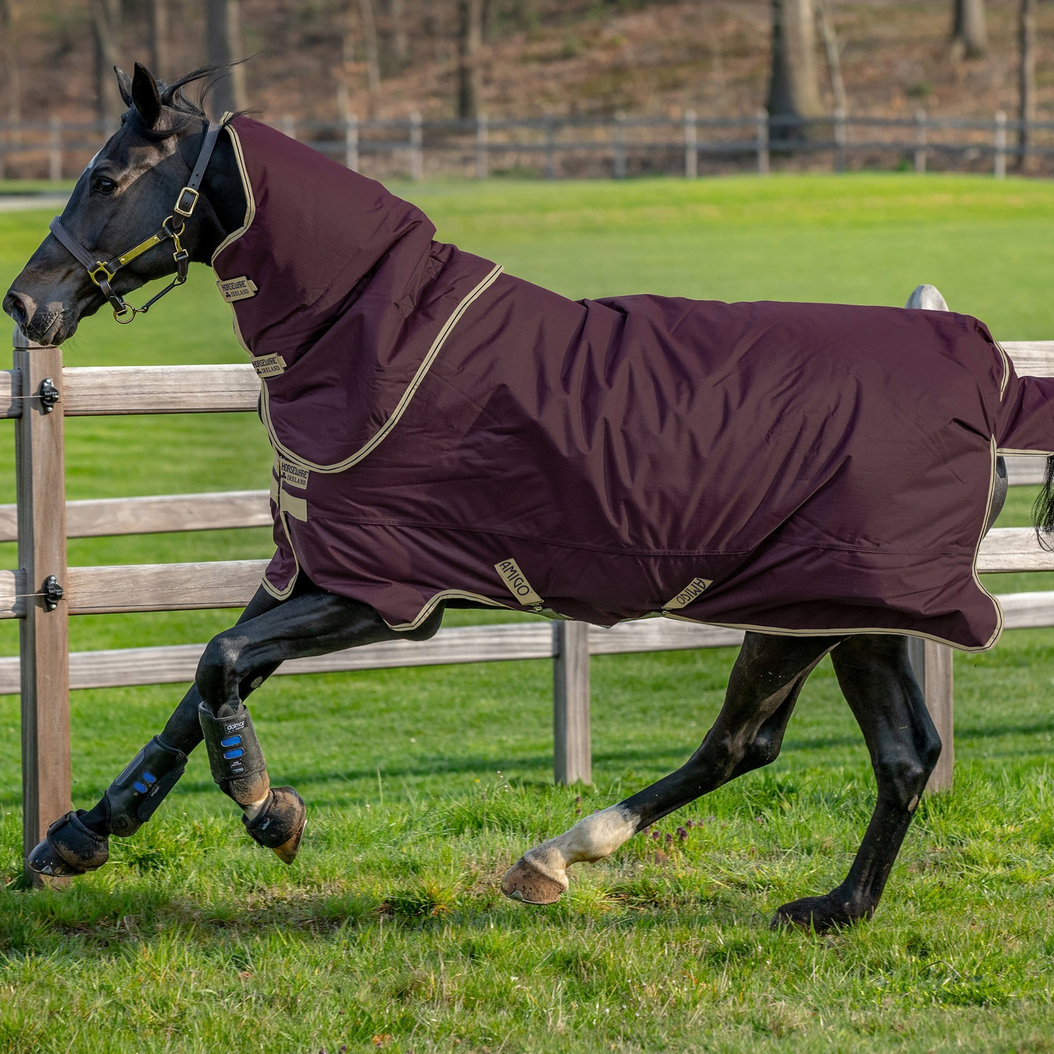 Amigo Hero Ripstop Plus Lightweight 0g Detachable Neck Turnout Rug Fig Navy and Tan AAPP90