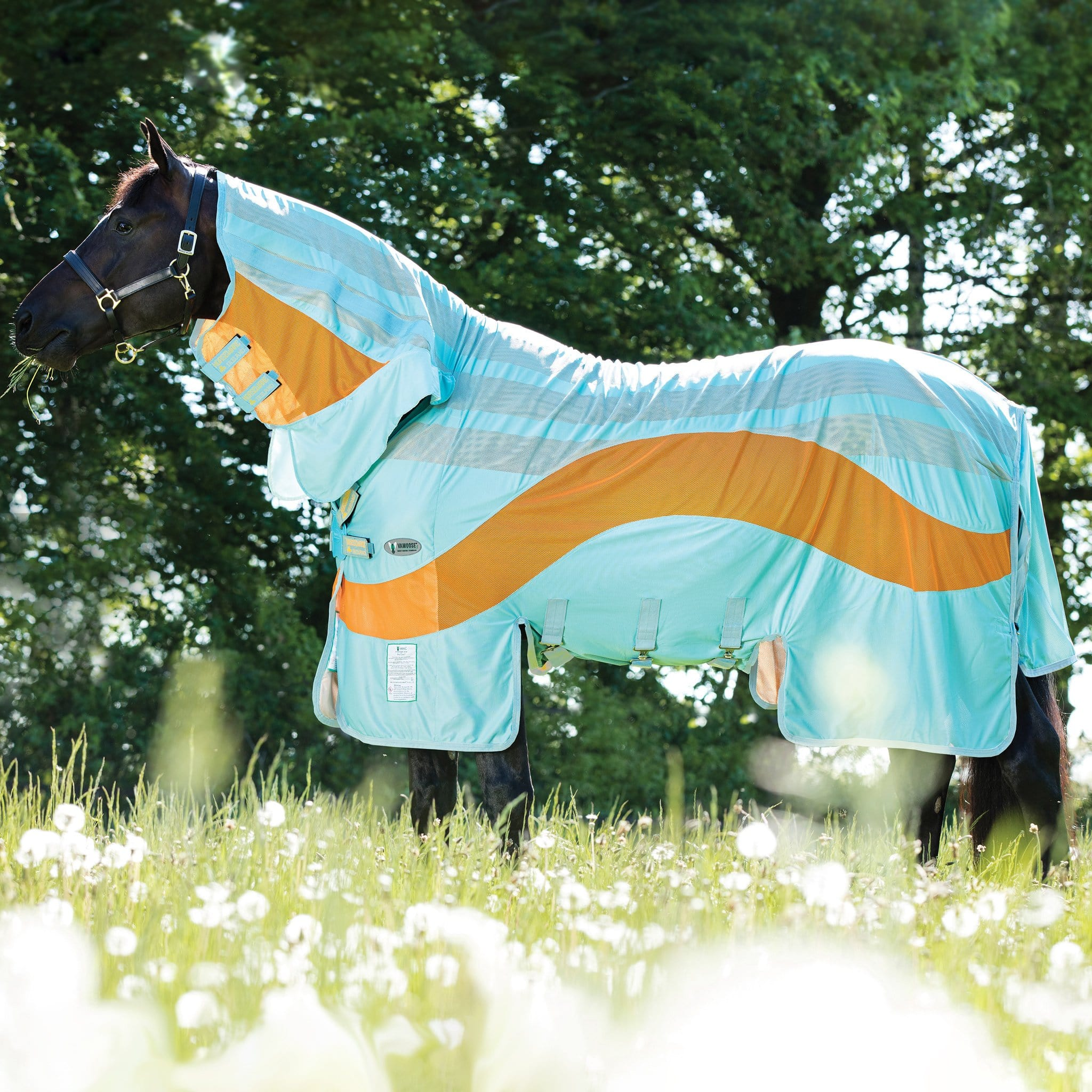 Amigo Vamoose Evolution Combo Fly Rug Aqua and Orange AFRR82