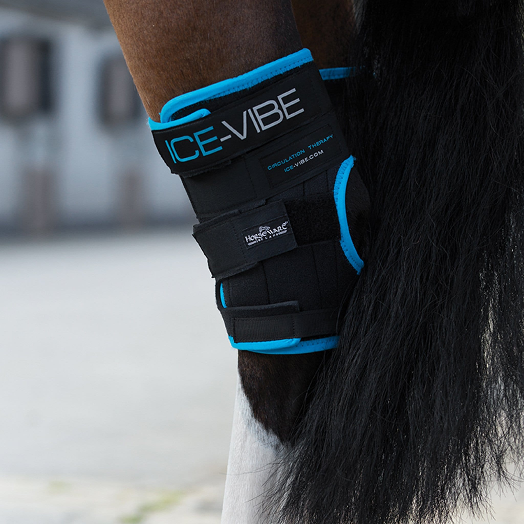 Horseware Ice-Vibe Hock Wraps DBHK71 Black and Teal Full