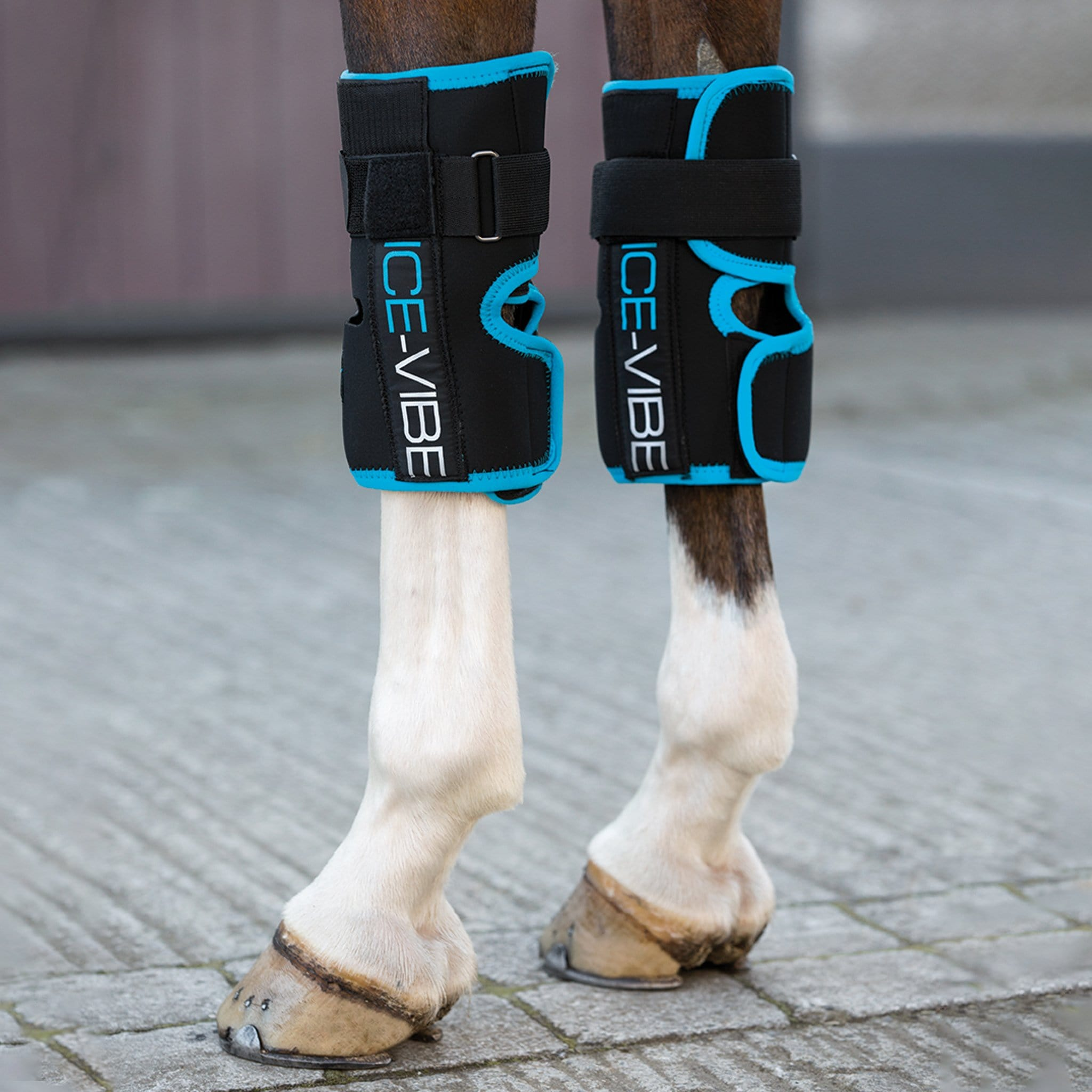 Horseware Ice-Vibe Knee Wraps DBHK72 Black and Teal