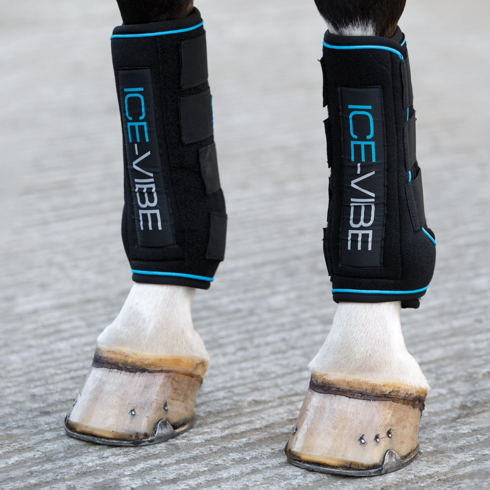 Horseware Ice-Vibe Tendon Boots DBHK8V Black and Teal Front
